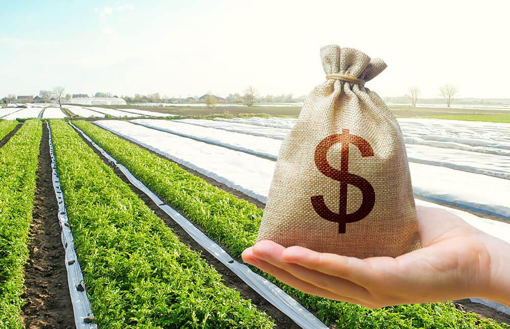 Les solutions de financements sur l'achat d'un terrain